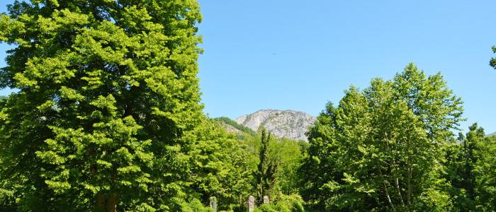 Le Parc - Chambre hôte les Forges d'Enfalits en Ariège Pyrénées Tarascon